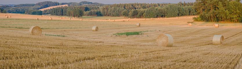 Fotoväggar - Ein Sommertag, Getreideernte