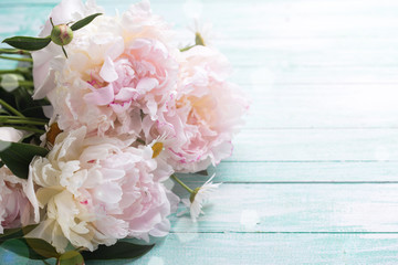 White  peonies flowers on turquoise wooden planks.