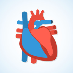 Flat design icons of human heart.