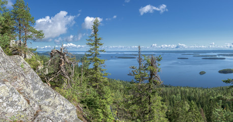 Fototapete - Panoramic view from the top of the Koli national park to lake Pielinen