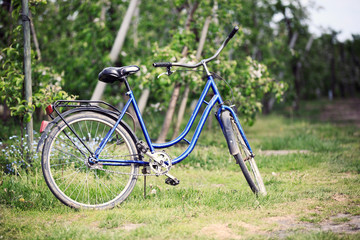 Old bike in the orchard