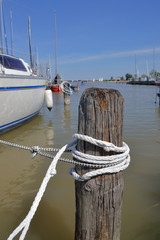 Poller aus Holz in Marina am Neusiedlersee in Rust