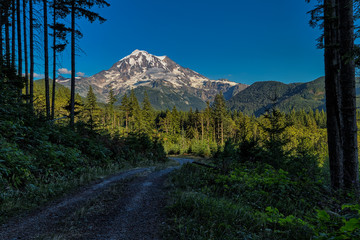 This photo was taken of Mt. Rainier in Washington State