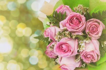 pink rose flower on green boken background