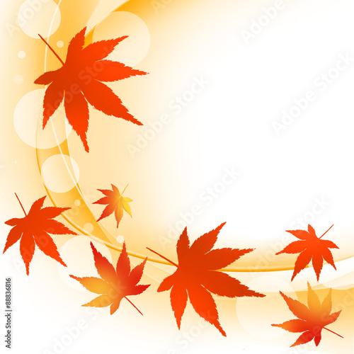 紅葉ブドウ ブドウの葉 ぶどう 葡萄 秋 紅葉狩り 落ち葉 落葉
