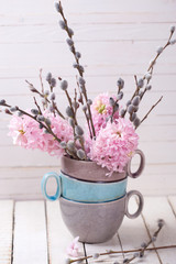 Hyacinths aand willow branches