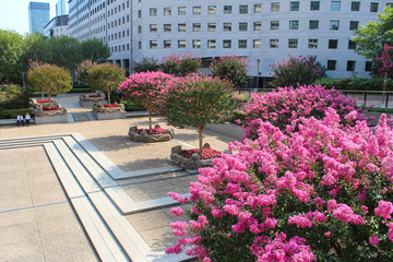 Gardens in La Defense, Paris