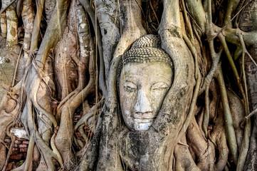 The palace complex Ayutthaya Thailand