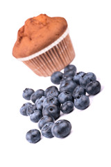 Muffin with blueberries