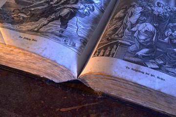 Buch offen mit Holzschnitte Anschnitt