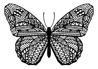 Hand Drawn Zentangle Style Butterfly Illustration