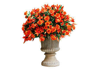 Wall Mural - orange flowers in a flowerpot