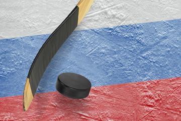 Hockey puck and stick