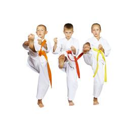 Sportsmens in karategi are beating kick mae-geri