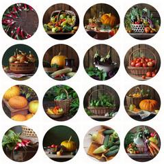 Коллаж из натюрмортов с овощами и грибами. Продукты питания.  Кабачок, тыква, огурец, баклажан, морковь, томат, лук, чеснок, редис, укроп, перец, горох. Иконки с овощами. Грибы.