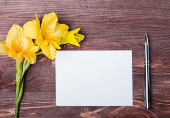 Yellow flower, empty paper sheet and pen on the wooden table