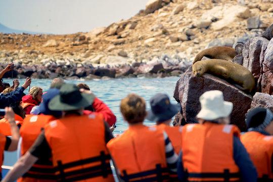 Tourists watching for fur seals, Ballestas, Peru