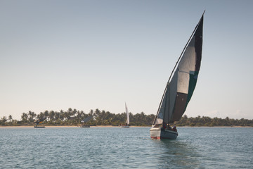 Typical boats called dhows near the coast of Barra and Praia do Tofo in Inhambane, Mozambique