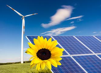 Solarpark mit Windrad und Sonnenblume 02
