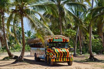 Safaribus in der Karibik