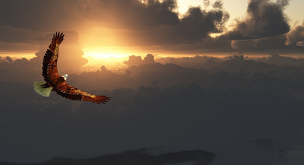 Eagle in Flight Above Dramatic Cloudscape