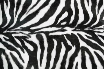 Zebra texture background