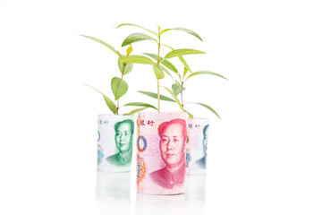 Concept of green plant grow on China Renminbi Yuan currency note