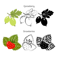 Vector set strawberry, gooseberry