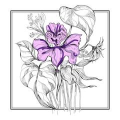 sketch flower bouquet in frame
