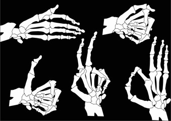 five human hand skeletons isolated on black