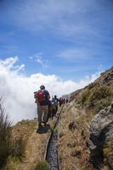 Madeira island levada walks