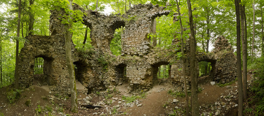 panorama ruins of the castle in the woods