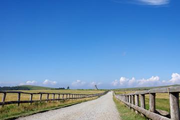 美ヶ原牧場(遊歩道)