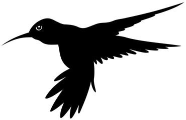 silhouette hummingbird