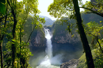 Wall Murals South America Country San Rafael Falls. The Largest Waterfall in Ecuador