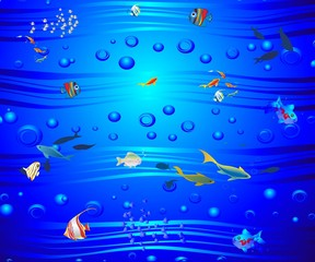 W głębinach morza,