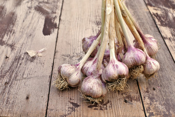 Bulbs of garlic on wooden background