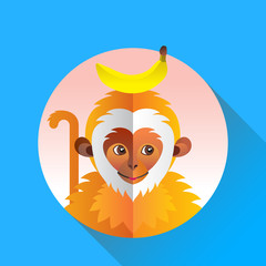 Cute funny monkey with banana on blue background