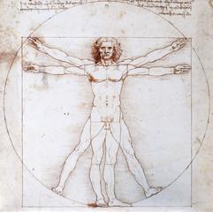 Proportionsschema der menschlichen Gestalt nach Vitruv