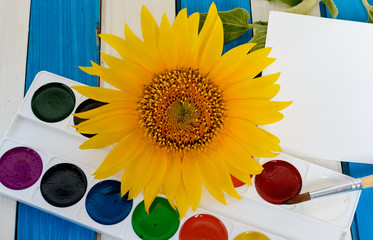 yellow sunflower and colored paints