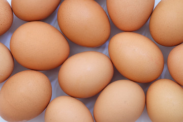 Chicken egg background full frame. Background of fresh eggs.