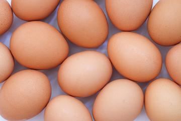Chicken egg background full frame. Background of fresh eggs.