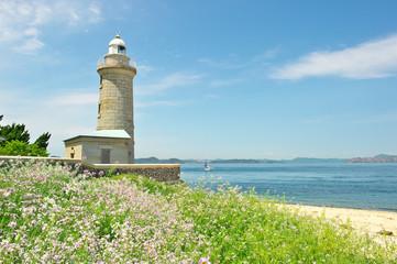 花と海と灯台