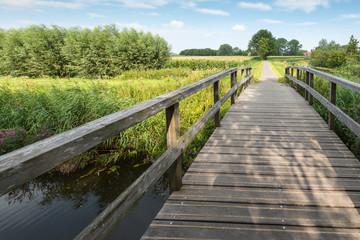 Wooden foot bridge over a small creek