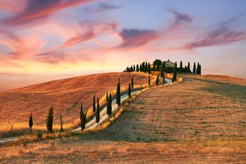 Photo sur Aluminium Toscane Tuscany Landscape