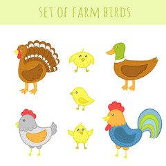 Set of vector farm birds