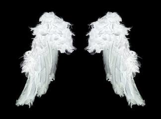 White angel wings on black background