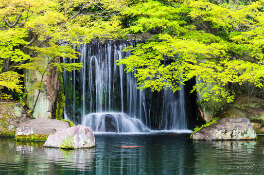 Zen garden pond with waterfall and carp fish in Japan.