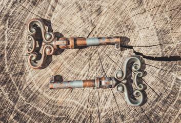Красивые антикварные ключи