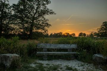 Zonsondergang bij een houten bankje in het Beekbergerwoud